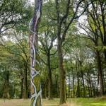 Sylvain Vaes - De boom, overwinning op een illusie (2012)
