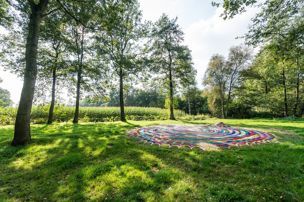 Riet Claes - Mijn gras (2014)